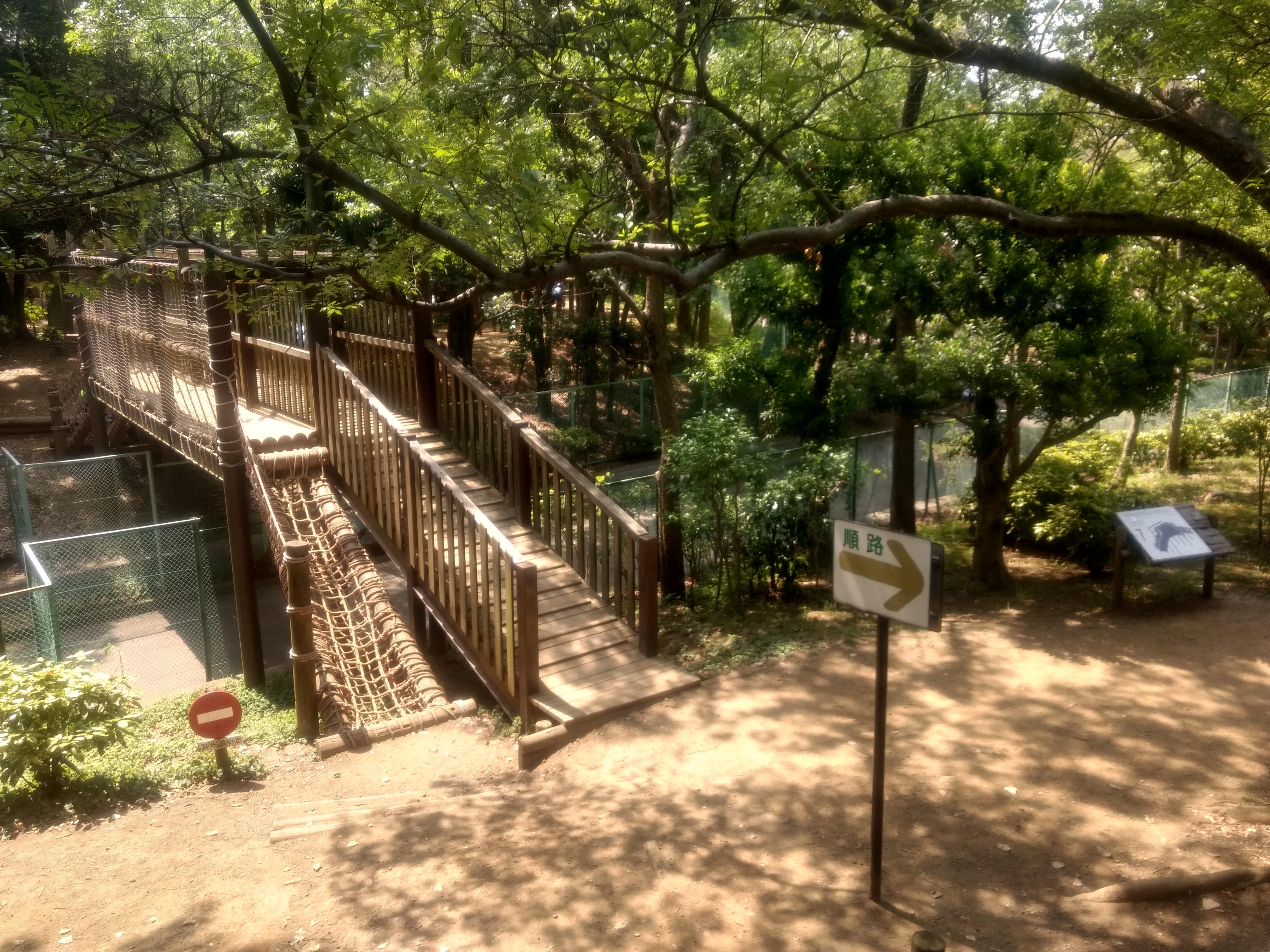 森 アスレチック 公園 の 平和 フィールド